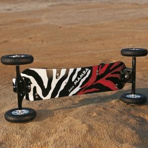 Zebra Mamba