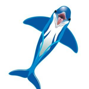 Aquilone in tessuto e fibra di vetro con la forma di un delfino